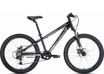 Forward Twister 24 2.0 disc (2020)